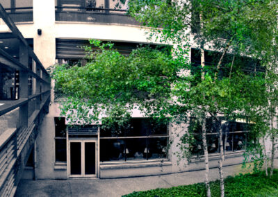 2012 Institut de Psychologie - BU Henri Piéron